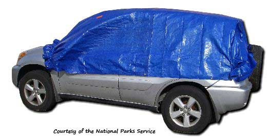 Blue tarp bungeed to a car